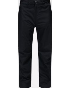 M Astral GTX Pant